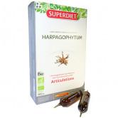 Harpagophytum Seratta : la meilleure solution contre les douleurs ... - Guide