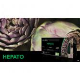 HEPATO Bio Ampoules TEP 20 ampoules