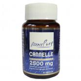 Cannelle 2500 mg 30 gélules Api-Nature 30 gélules