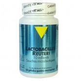 Lactobacillus Reuteri 10 milliards 30 gélules Vitall+ 30 gélules gastro-résistantes