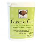 Gastro gel 30 comprimés New Nordic 30 comprimés à croquer
