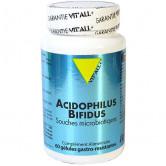 Acidophilus Bifidus 60 gélules Vitall+ 60 gélules