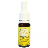 Agrimony 10ml Elixir Vallespir 10 ml