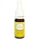 Centaury 10ml Elixir Vallespir 10 ml