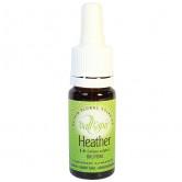 Heather 10ml Elixir Vallespir flacon 10ml