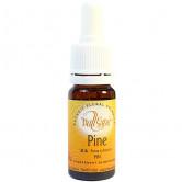 Pine 10ml Elixir Vallespir flacon 10ml