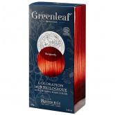 GreenLeaf_Burgundy_Coloration_végétale_bio