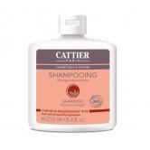 Cattier shampoing gras vinaigre romarin 250ml