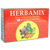 Herbamix_savon_ayurvédique_125g