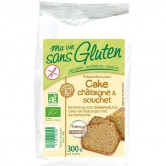 Cake Bio Chataigne & Souchet 300gr