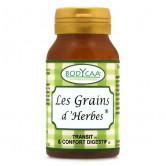 Les_grains_d'herbes_Bodycaa