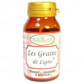 Les_grains_de_ligne_Bodycaa