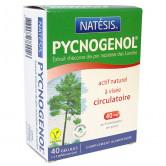 Pycnogénol_Natsesis_40_gélules