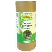 Gomme_de_propolis_eucalyptus_phytofrance