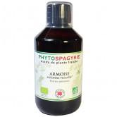 PhytoSpagyrie_Armoise_bio_Vecteur_Energy