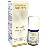 Quantique_Olfactif_Ressentir