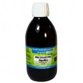 Pin_sylvestre_aiguilles_extrait_hydroalcoolique_phytofrance