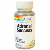 Adrenal_Success_60_gélules_Solaray