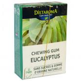 Chewing_gum_Eucalyptus_dietaroma