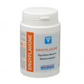 ErgyFlavone Nutergia 60 gélules