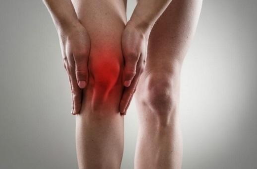 Articulation genoux