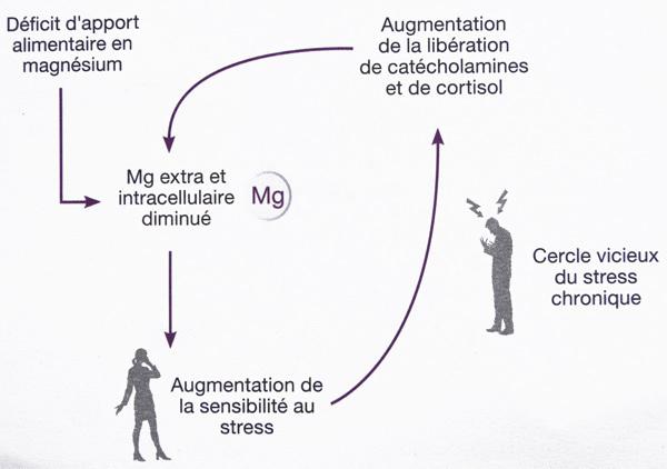 magnesium-stress